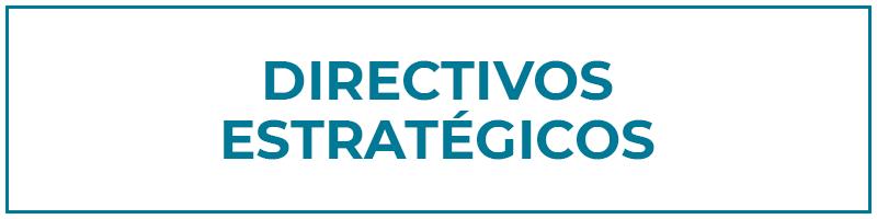 directivos estratégicos