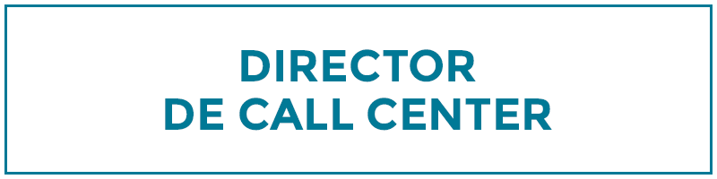 director de call center