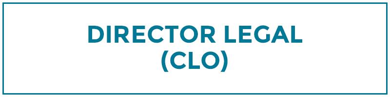 director legal